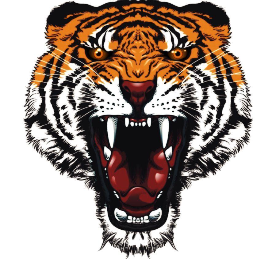 Рисунок тигра с оскалом
