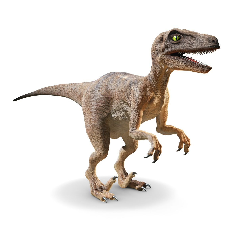 3d velociraptor porn fucked video