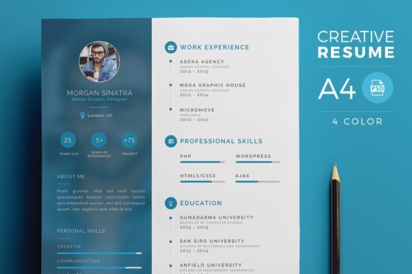 Modern infographic resume free