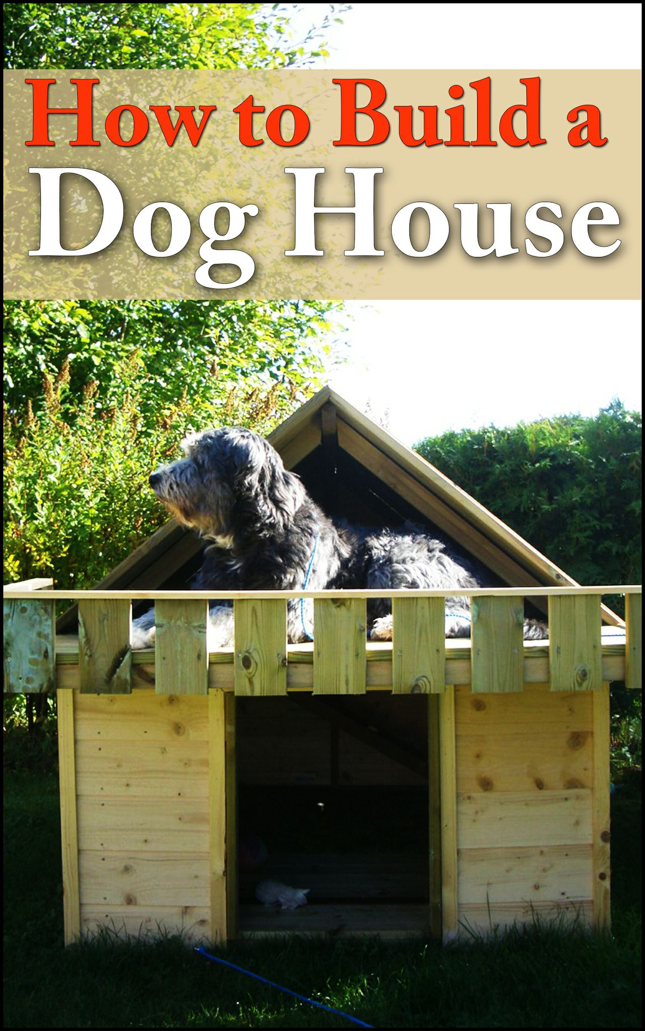 How To Build A Dog House: Providing Comfort For Your Outdoorsy Dog