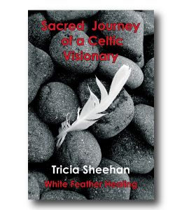 Sacred Journey of a Celtic Visionary by Tricia Sheehan