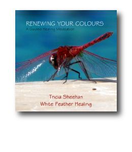 Renewing Your Colours by Tricia Sheehan