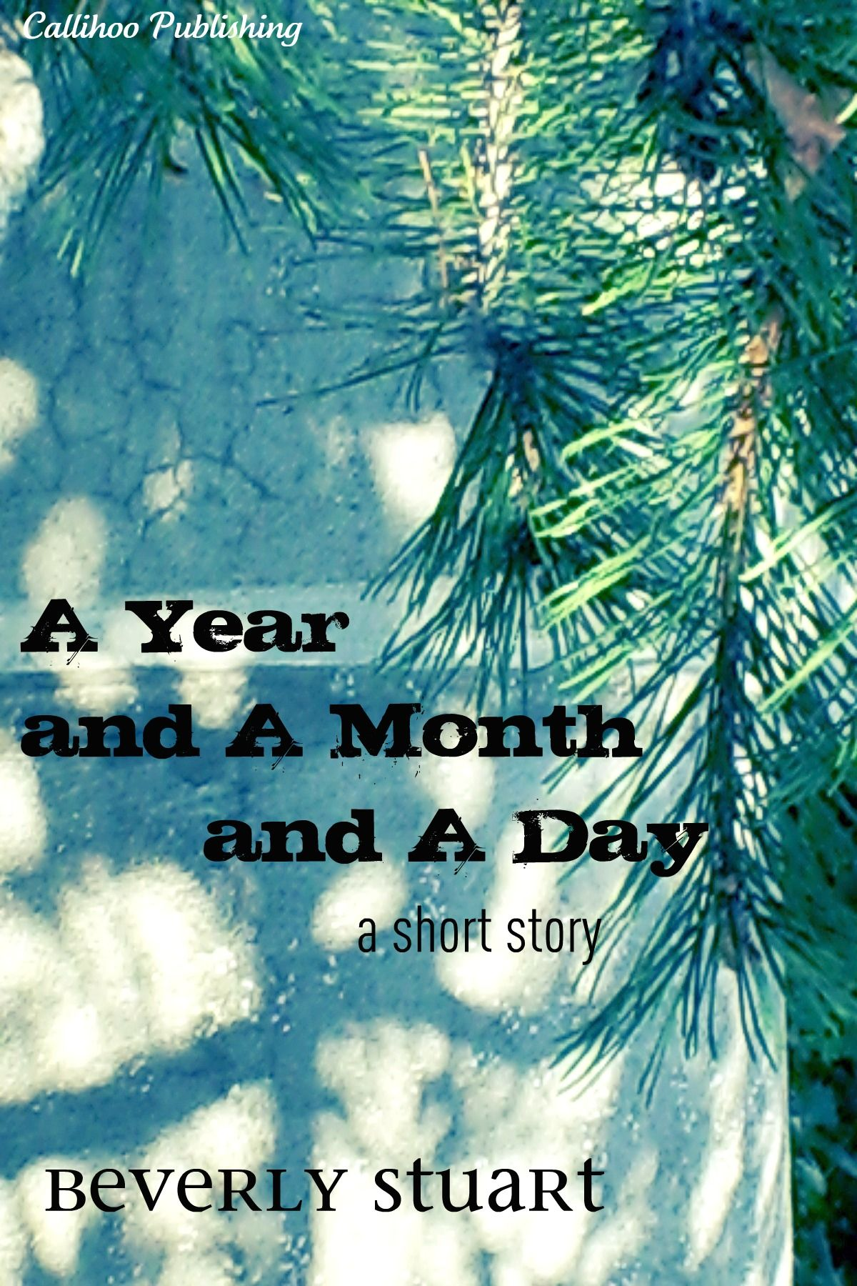 A Year and a Month and a Day (epub)