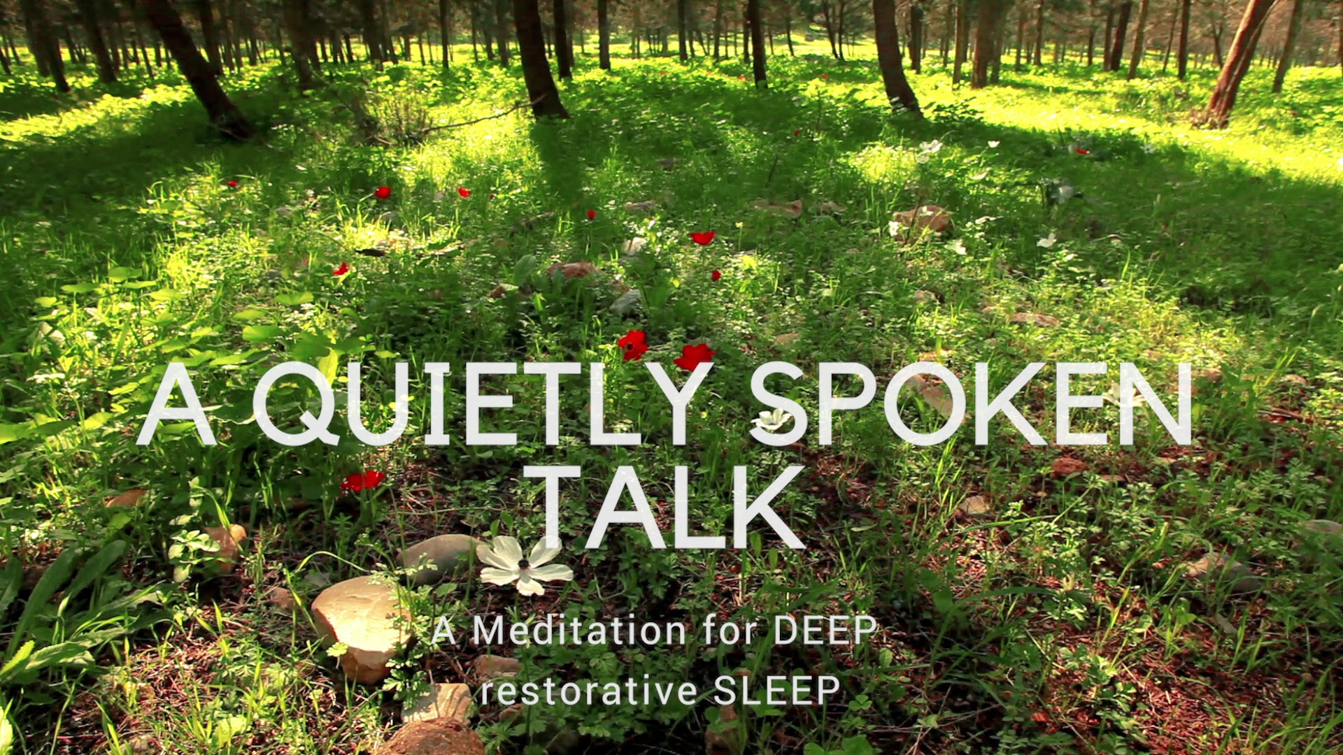 A QUIETLY SPOKEN CALMING CHAT & meditation to help you relax and sleep