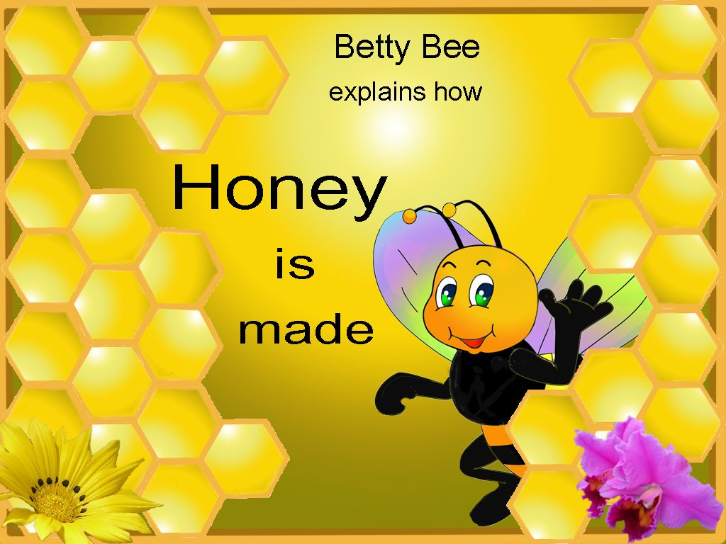 Betty Bee explains how honey is made