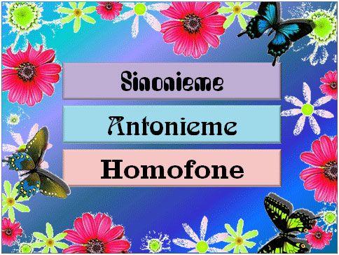 Toets my kennis van sinonieme, antonieme en homofone
