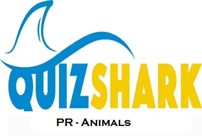 Pics - Animals