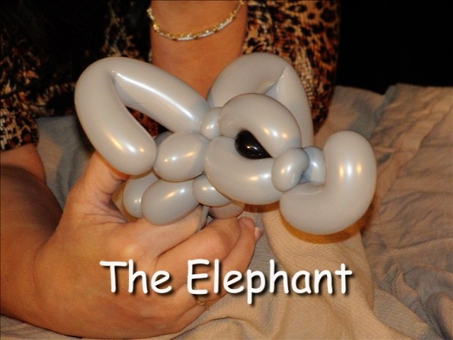 Elephant Balloon Animal Bracelet by Vicky Kimble