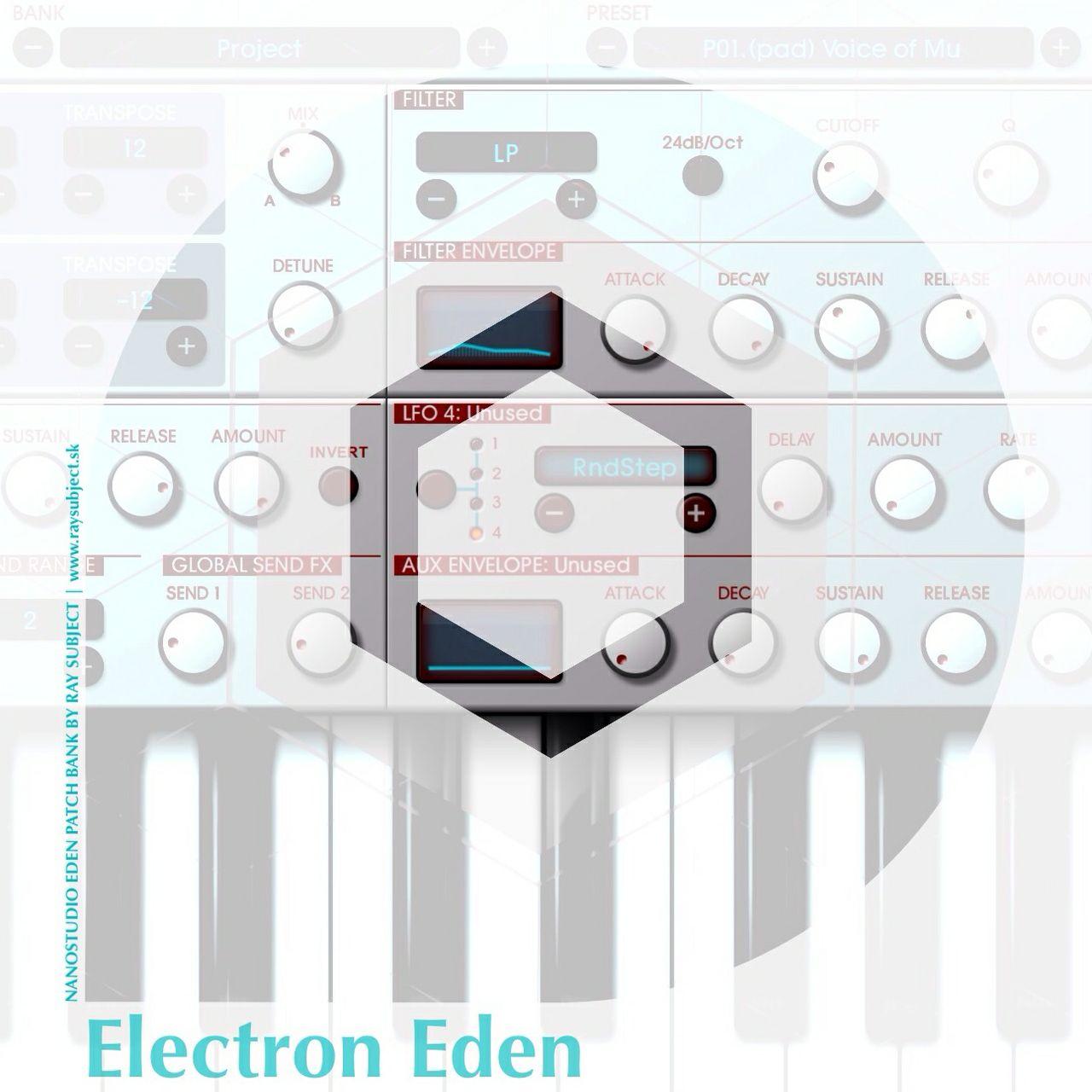 Electron Eden