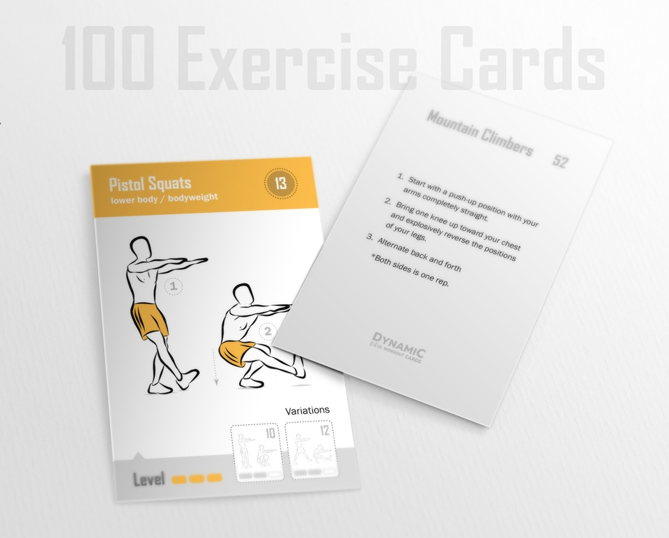 100 Bodyweight Cards / Trainers License -  PDF