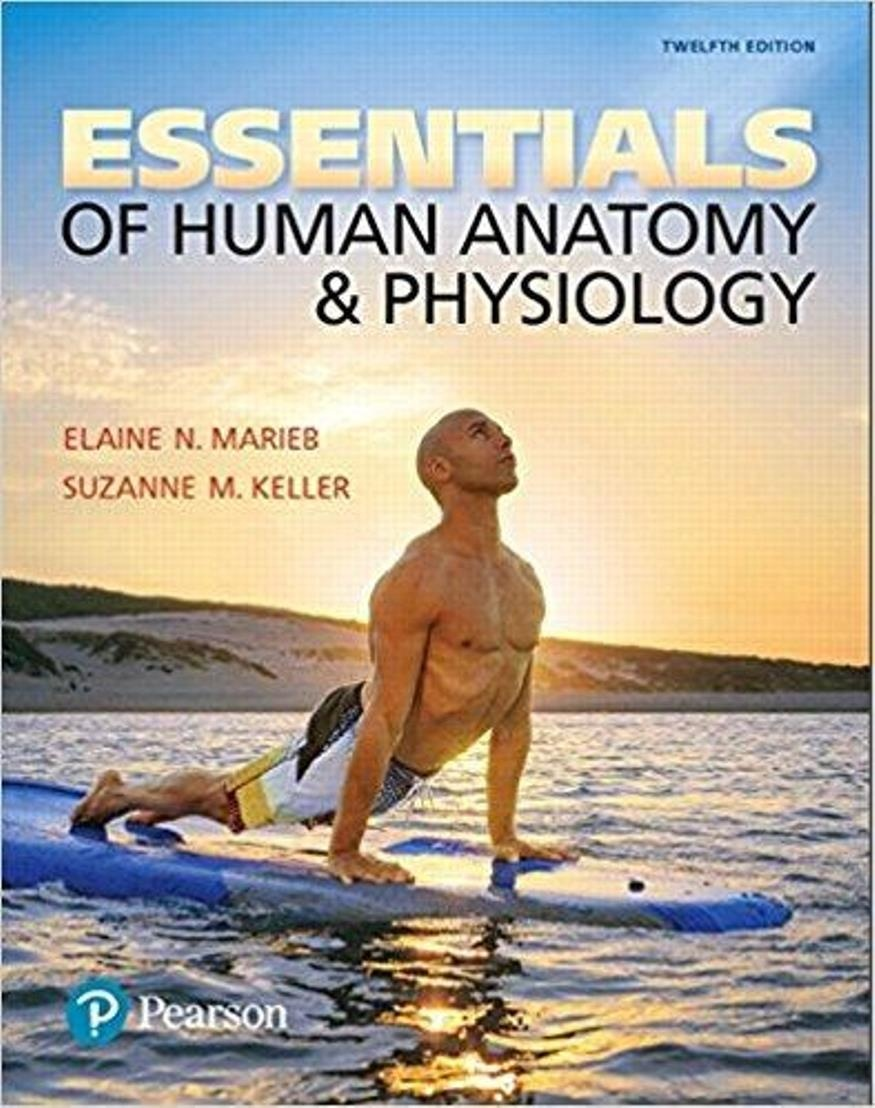 Essentials of Human Anatomy & Physiology 12th Edition ( PDF , Instant download )