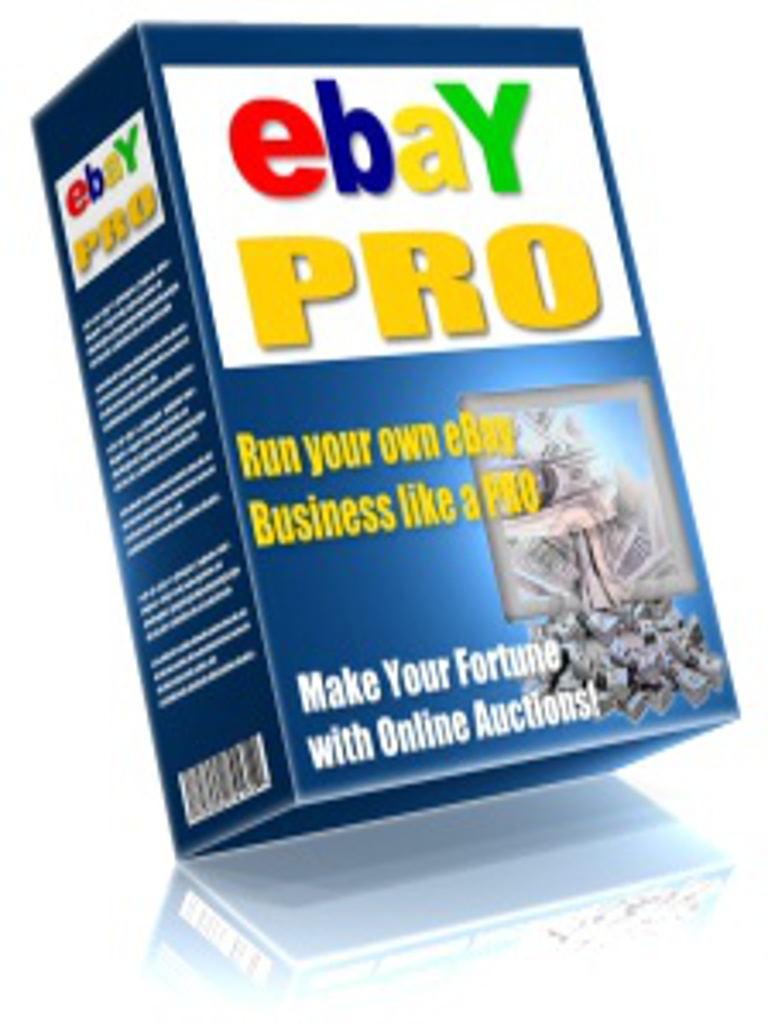 Run Your eBay Business Like A Pro PDF eBook Including Master Resell Rights