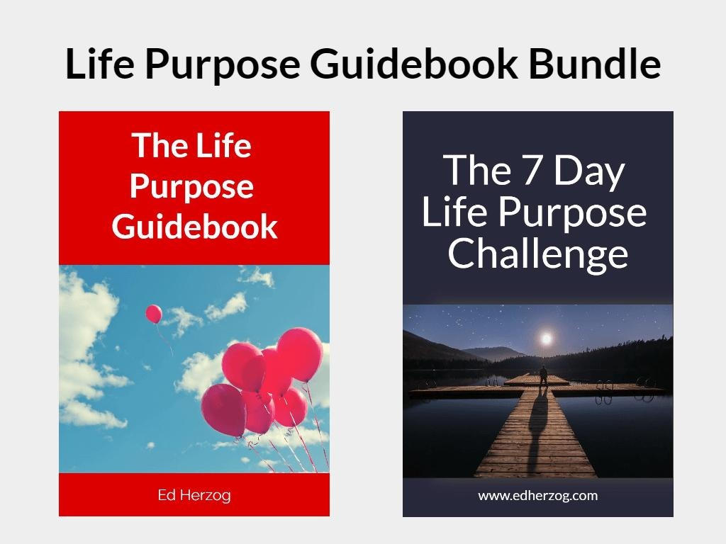 Life Purpose Guidebook Bundle