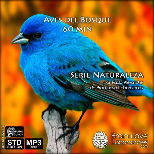 MP3 - Aves del Bosque 60 min