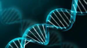Crystalline DNA Activation