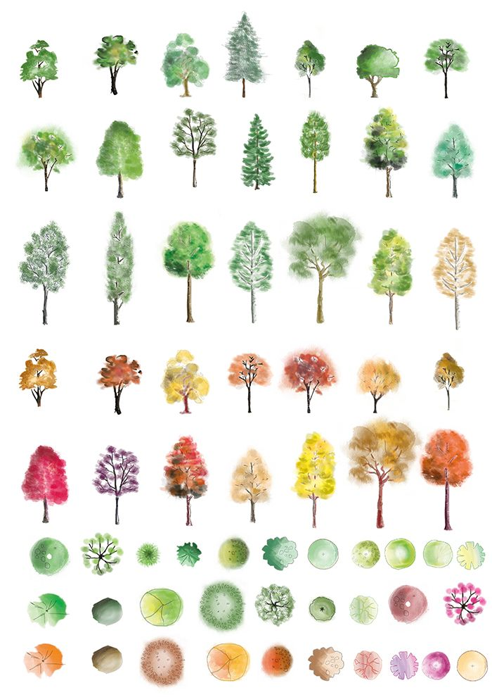 Colour photoshop trees