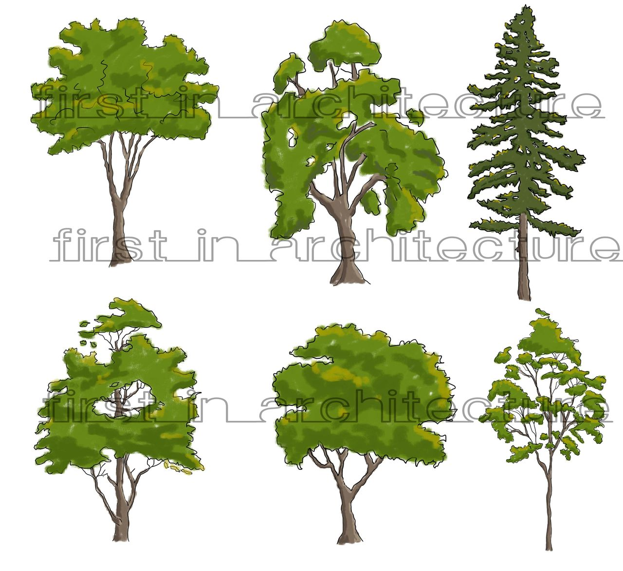 Sketchy Trees 01 - Sketch Up Components