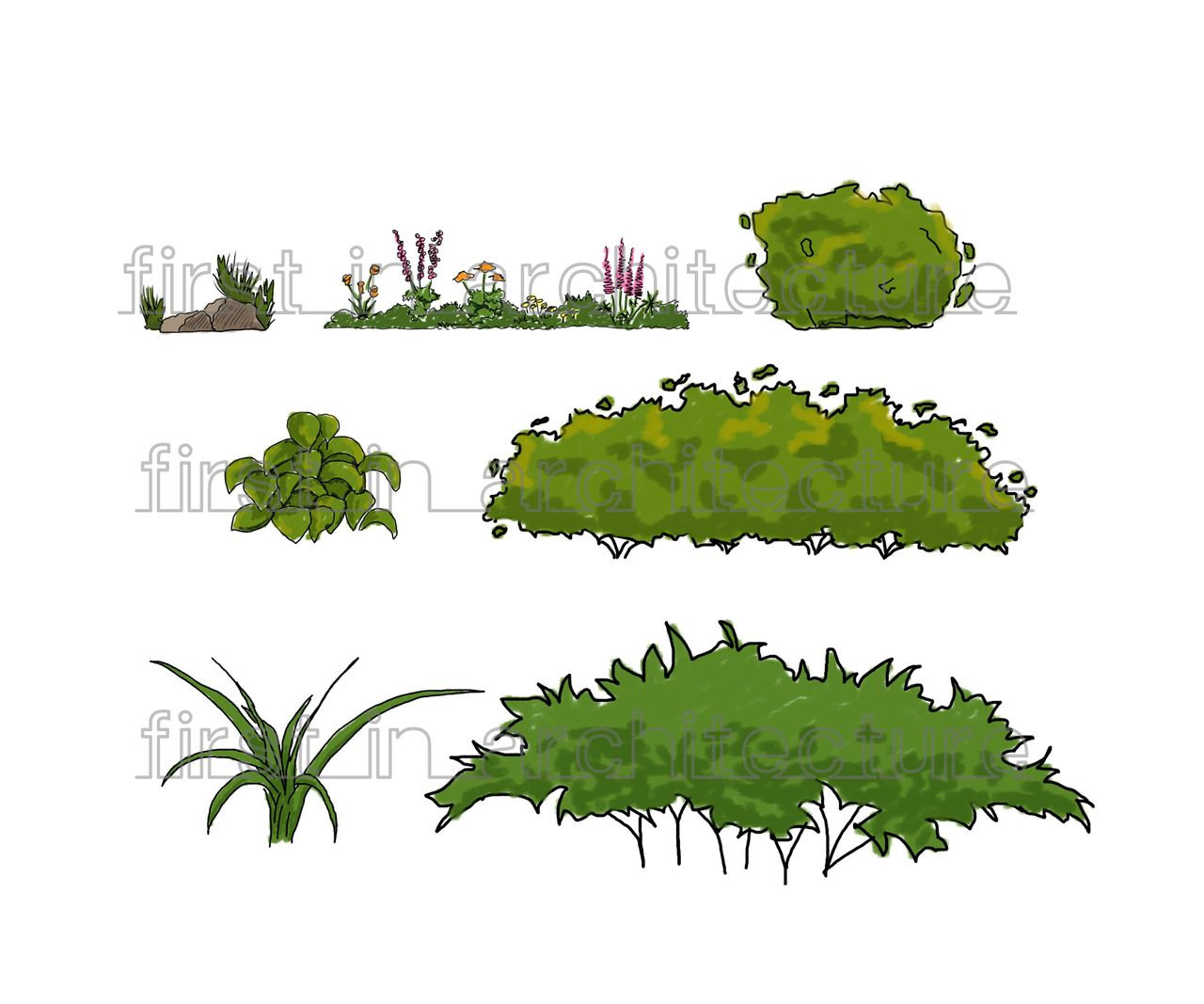 Sketch Up Components - Sketchy Plants
