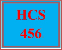 HCS 456 Week 4 Tools and Decision Making for Ongoing Performance Management Scenario Worksheet