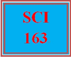 SCI 163 Week 5 Health and Wellness Assessment