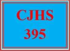 CJHS 395 Week 3 Client Profile