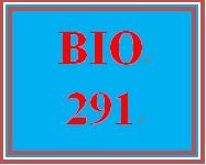 BIO 291 Week 3 Primal Pictures