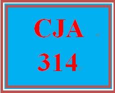 CJA 314 Week 4 Week 5 Learning Team Outline