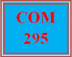 COM 295 Week 2 Collaborative Writing Activity
