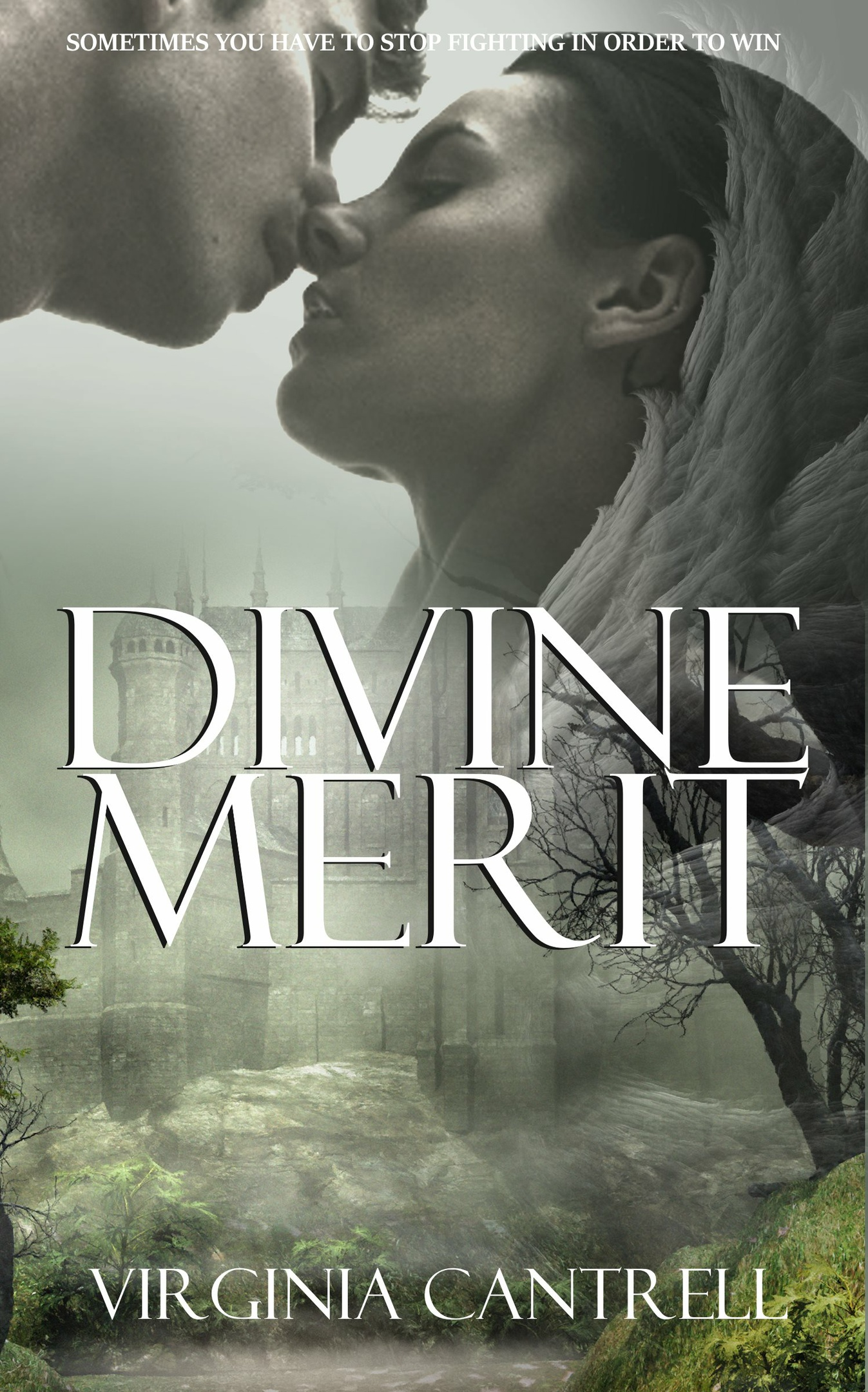Epub Divine Merit - Virginia Cantrell