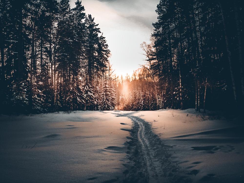 Winter Presets