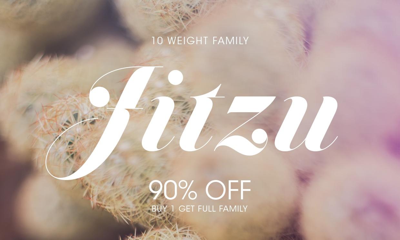 Jitzu Font Family | 90% OFF