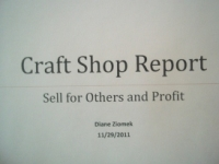 Craft Shop Report