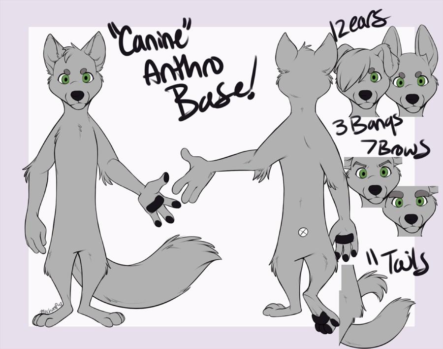 Canine Anthro Base