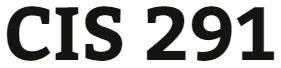 CIS 291 Week 4 Individual: IT Profile