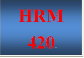 HRM 420 Week 3 Succession Plan Risks
