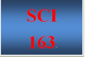 sci 163 week 2 Find answers on: sci 163 week 3 dqs more than 1000 tutors online.