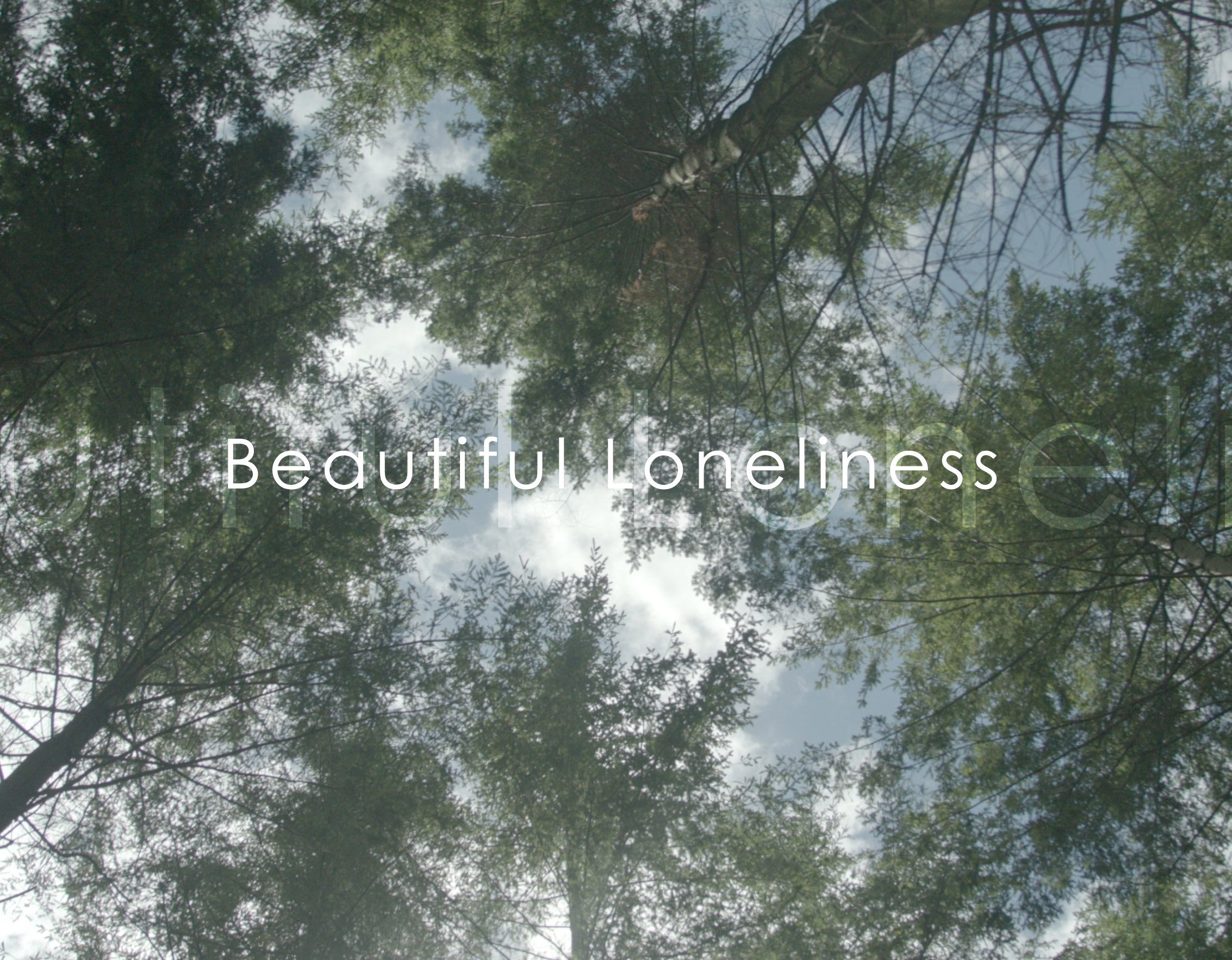 Beautiful Loneliness Album