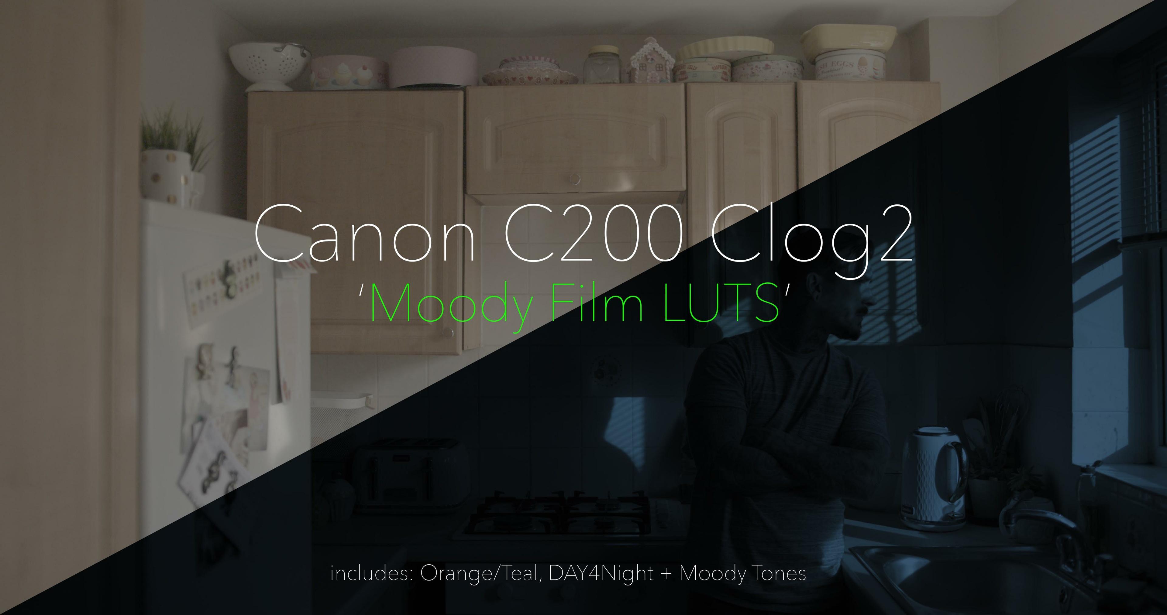 Canon C200 C-Log2 // Moody Film LUTS