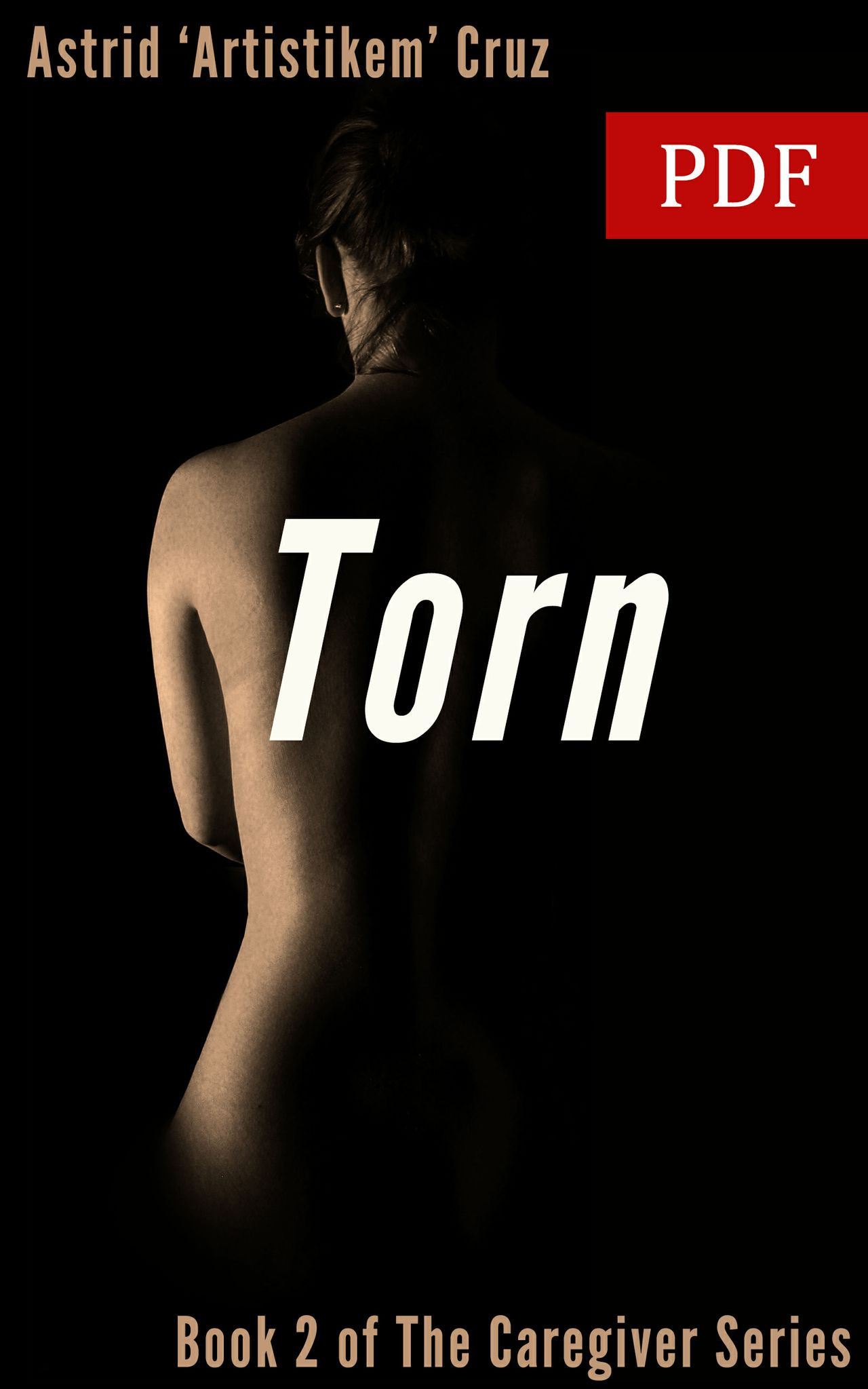 Torn (Book 2 of The Caregiver Series) - PDF