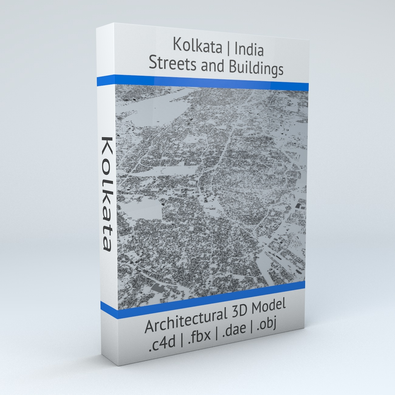 Kolkata Streets and Buildings Architectural 3D Model