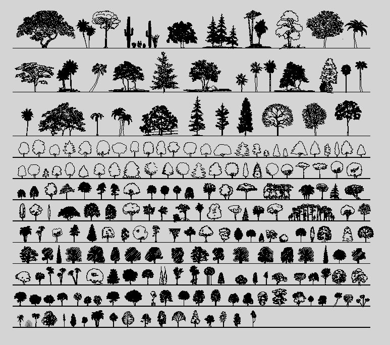 Elevation And Plan Of Trees : Trees in elevation view cad pirate sellfy