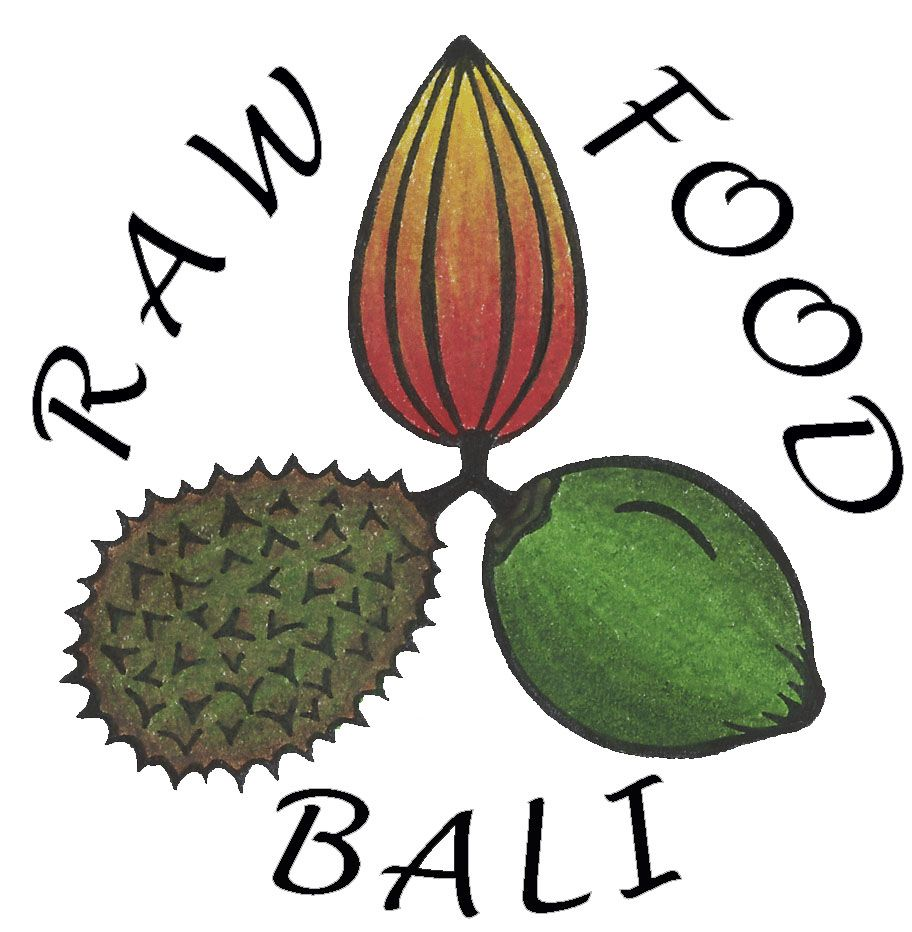 50% Deposit for 1 Spot in a Raw Food Workshop