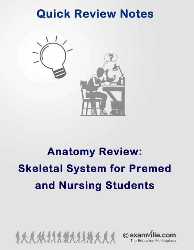 Skeletal System Review for Nursing Students