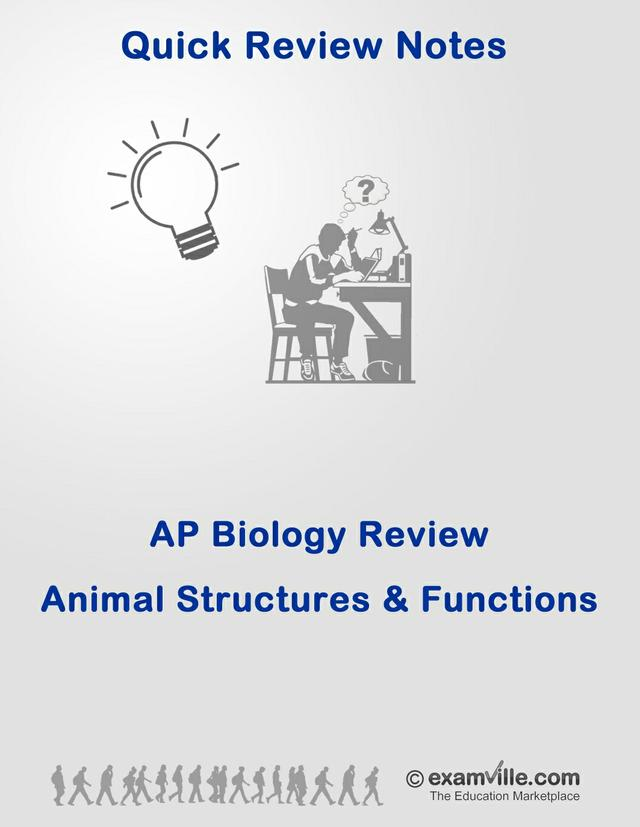 Biology Review: Animal Structures and Functions