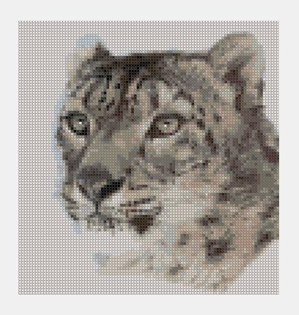 Cross Stitch PDF Animal
