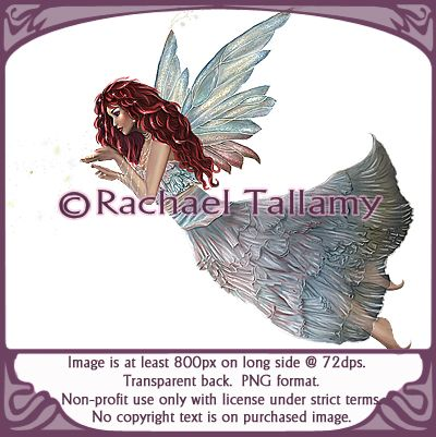 Fairy-Non-profit only with licensed use from rtallamy.com.  Copyright-Rachael Tallamy