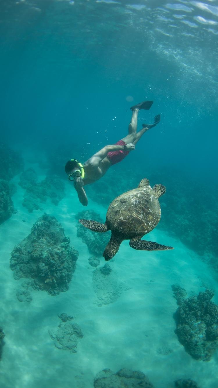 Nolan Omura Underwater Lightroom Presets