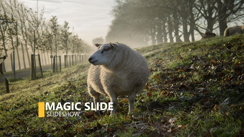 Template Magic Slideshow sony vegas 12 13 14