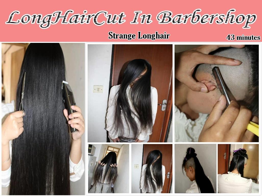 strange longhair