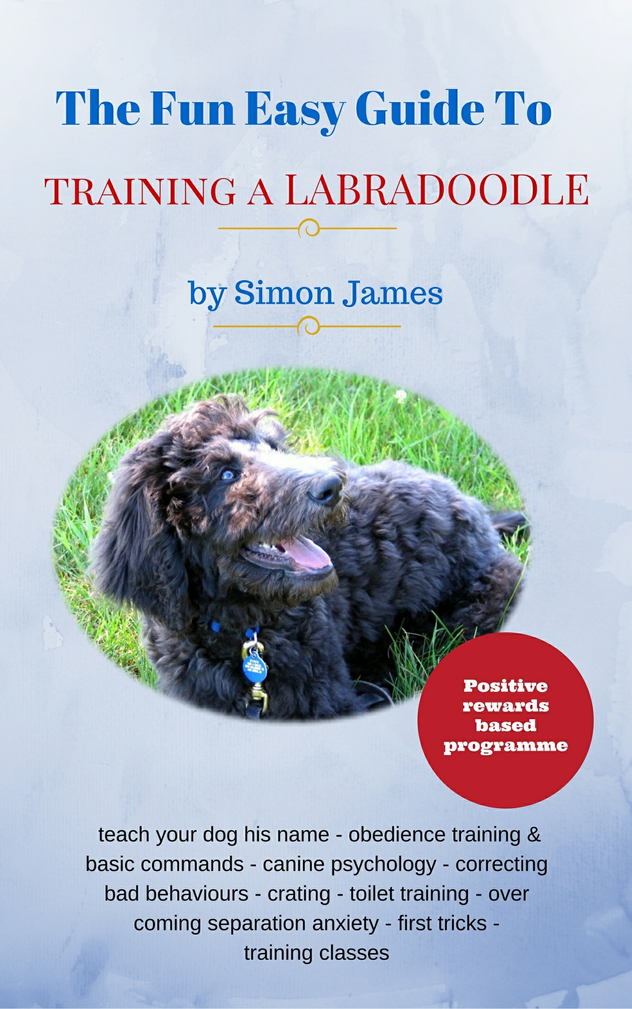 The Fun Easy Guide To Training Your Labradoodle